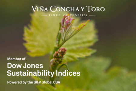 Viña Concha y Toro performs strongly in Dow Jones Sustainability Indices 2020