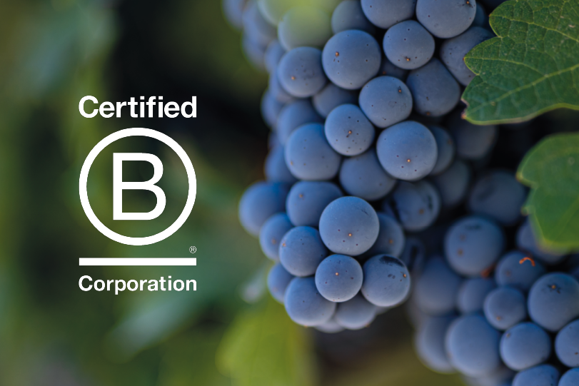 Viña Concha y Toro and subsidiaries join the community of B Corporations