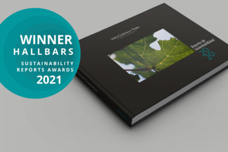 Sustainability Report 2020 is chosen the best in Chile